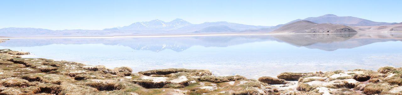 Laguna Santa Rosa Beauty In Nature Lake Landscape Atacama / Chile 🇨🇱