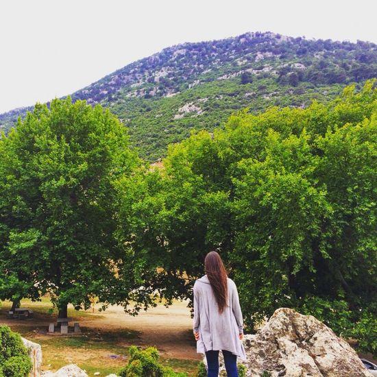Doğa doğayla savaş halindeyiz kazanırsak kaybedeceğiz 😔 Natural Beauty Tree Green Travel Natural Photography EF