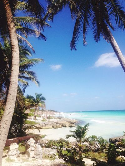 Tulum Tulum Beach Summer Beach Relaxing Hanging Out Enjoying Life Holiday Sun Mexico Mexicanstyle