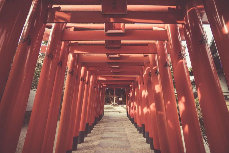 Full frame shot of torii gate