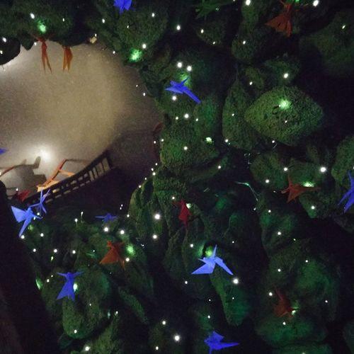 Elboscdelesfades Fairy Fairyforest Keiju Keijumetsä Barcelona Bcnexploradores Bcnexplorers SPAIN Ceiling Techo Lights