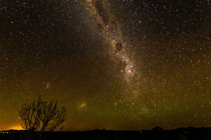 Stars and milky Way over country Australia EyeEm Best Shots The Great Outdoors - 2017 EyeEm Awards The Week On EyeEm Astronomy Bare Tree Beauty In Nature Constellation Galaxy Landscape Low Angle View Majestic Milky Way Nature Night No People Outdoors Scenics Sky Space Star - Space Starry Tranquil Scene Tranquility Tree