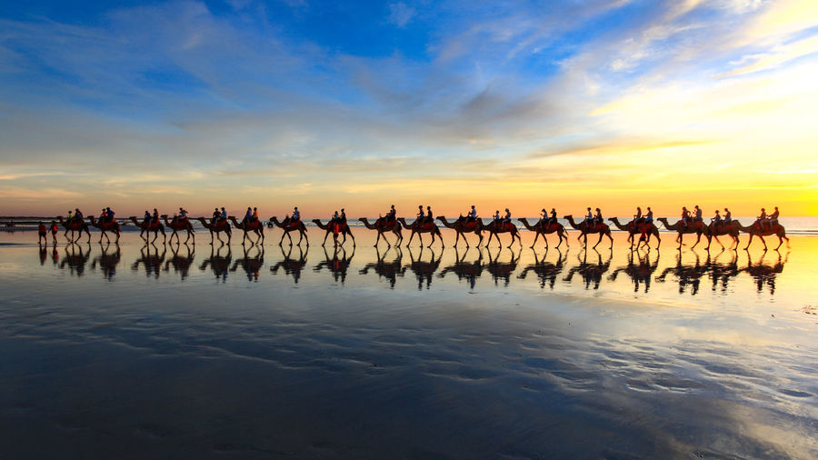 People Riding Camels At Beach Against Sky During Sunset