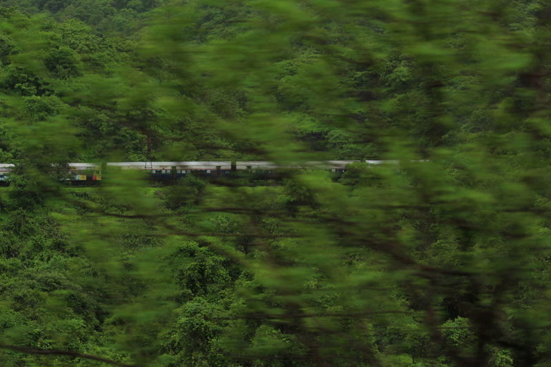 Canon700D Taking Photos Bushes Canon Greeenery Hillside Indianrailways Speed Train Trainride,
