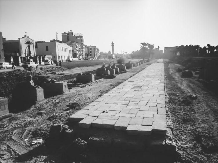 http://www.dailymail.co.uk/news/article-1329926/Archaeologists-discover-sphinx-lined-road-Luxor-Egypt-4th-century.html Architecture Black And White Blackandwhite Building Exterior Built Structure City Cityscape Clear Sky Day Light And Shadow No People Outdoors Road Of Sphinx Silhouette Sky The City Light