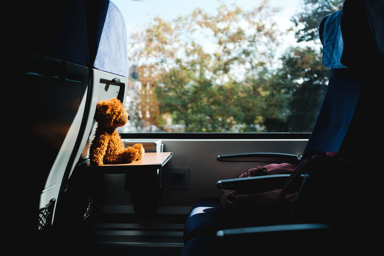 Teddy Bear By Window In Bus