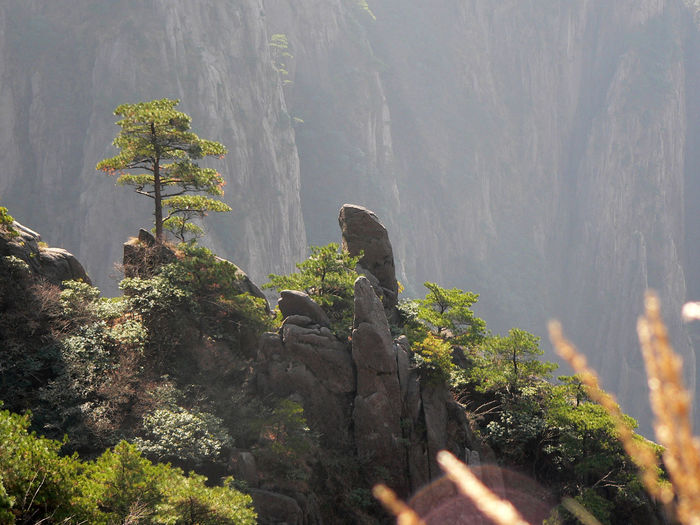 Yellow mountains, China Amazing Mountain Amazing Nature Amazing Place Amazing Rocks China Mountain Forest Mountain Mountain Forest Nature Rock Yellow Mountains