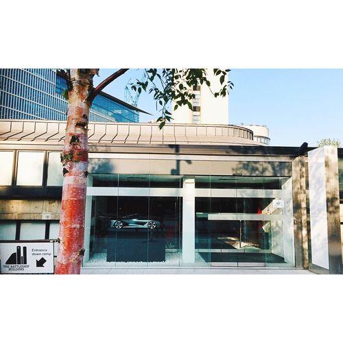 // Battleship Values // Cars Naturalized Carporn Carportrait Window Tree Façade Architectural Detail Miniature Model Lerone-frames Streetphoto_color Sunlight Lines Geometric Shapes