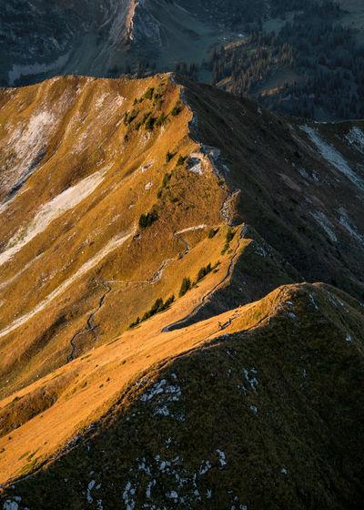 Gantrisch Ridge