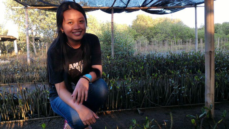 baby mangrove