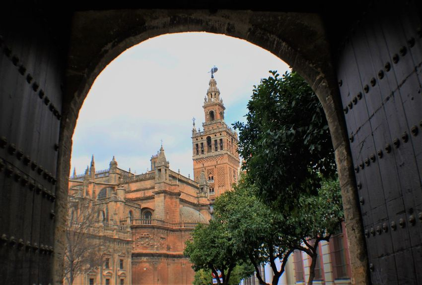 Arch Architecture Cathedral Cloud - Sky Door Gate Giralda Giralda Cathedral History Orange Trees Sevilla Sevilla, España Seville Travel Destinations The Architect - 2016 EyeEm Awards Feel The Journey