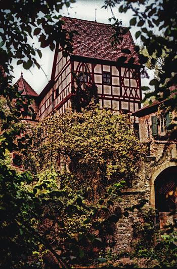 Building Exterior Built Structure Architecture Tree Growth Ivy No People Low Angle View Plant Nature House Outdoors Residential Building Branch Flower Day Sky Old-fashioned Antique Unsleben Water Tower Architecture Old Buildings Unterfranken Rhön-Grabfeld