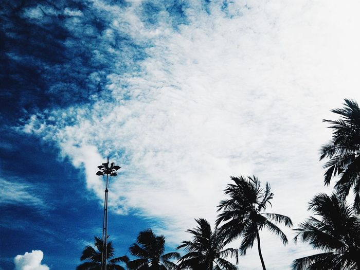 Vscocam Clouds And Sky Silhouette Negative Space