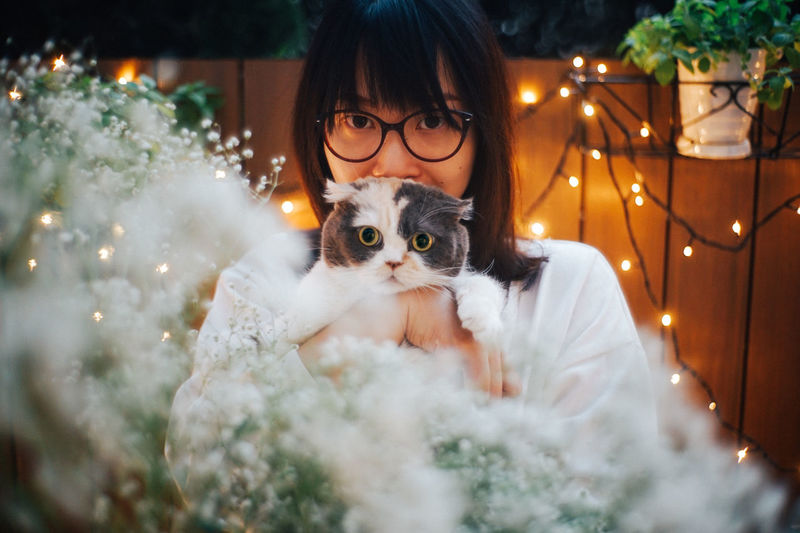 Pets Domestic Cat Mammal Domestic Animals Portrait Domestic Cat One Animal Feline Illuminated One Person Looking At Camera Front View Celebration Holiday Young Adult Holding Pet Owner Light And Shadow Bokeh Bokeh Photography Bokehlicious Fence Plant Scottish Fold