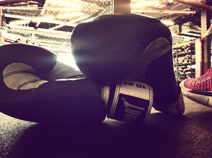 Boxing Never Give Up Never Back Down Boxing Gloves Motivation Fitness Gym Training Workout