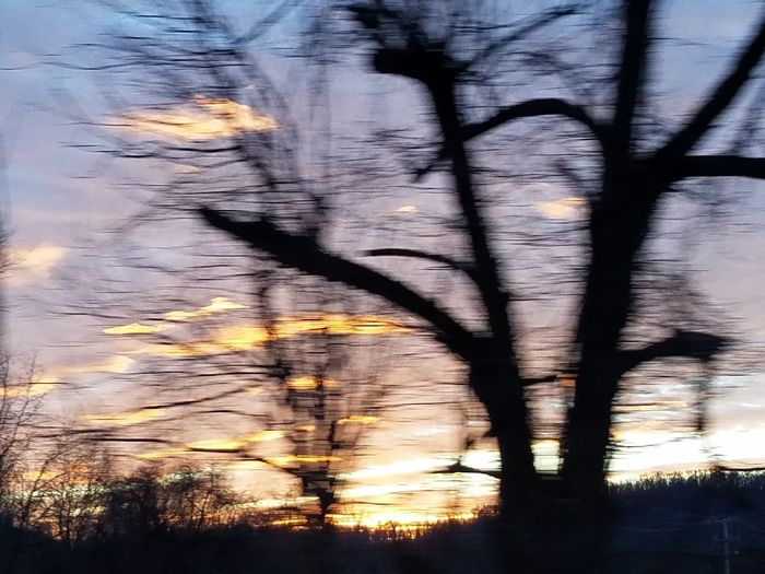 Tree Abstract Sunset Shadow Silhouette Sunlight Full Frame Outdoors Nature Sky Beauty In Nature