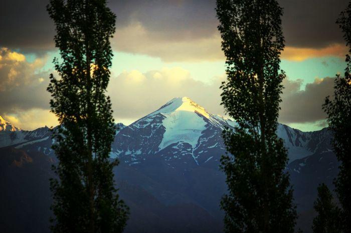 Mountains Random