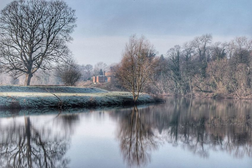 Johns tree for the last time in 2016 Wintertime Art In Nature Down By The River Water Reflections Relection On Water