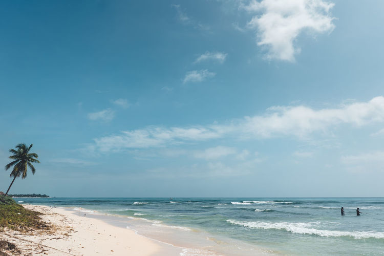 Sea Water Beach Sky Land Horizon Horizon Over Water Beauty In Nature Scenics - Nature Cloud - Sky Palm Tree Tropical Climate Nature Day Tranquility Wave Tranquil Scene Sand Motion Outdoors