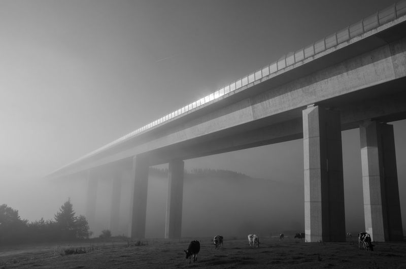View of bridge in foggy weather