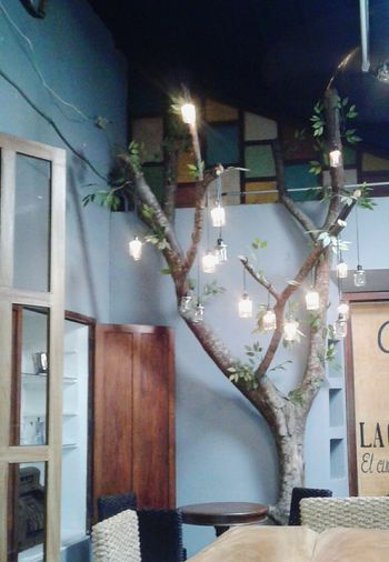 Decoration Caffè Ligth Tree Relaxing Place Nice