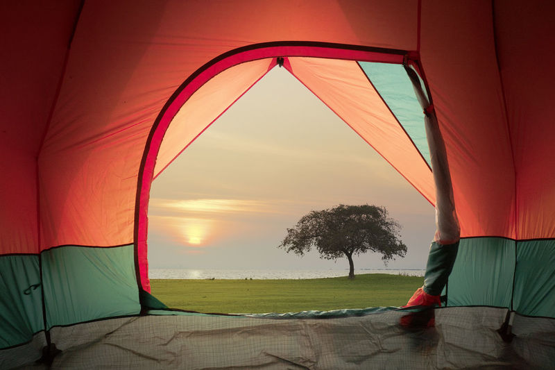 Tent view on window with sunset or sunrise background Sky Sea Water Scenics - Nature Land Sunset Nature Orange Color Horizon Beauty In Nature Horizon Over Water Beach Tranquility Plant Tree Tranquil Scene Red Outdoors No People Tentacle