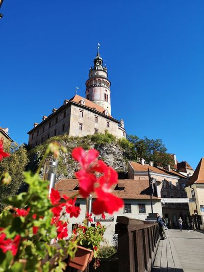 Attraction Attractions Český Krumlov CeskyKrumlov Flower Clear Sky City Clock Tower History Blue Sky Architecture Building Exterior Built Structure Castle Cathedral