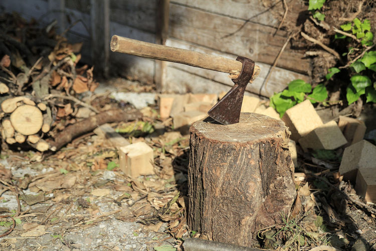 Ax used to cut the wood