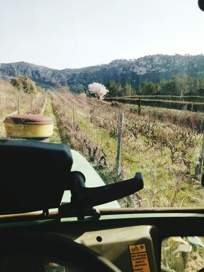 Day Nature Beauty In Nature Mountain Sky Landscape Working Hard Taking Photos Enjoying Life Wine Winemaking Rural Scene Tracteur Fendt