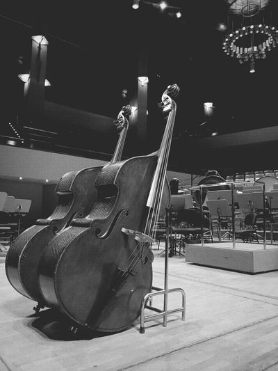 Music Arts Culture And Entertainment Musical Instrument Musical Instrument String Indoors  String Instrument Electric Guitar Guitar No People Concert Hall  Popular Music Concert Classical Music Day Cello Violoncello