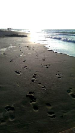 Spuren im Sand Sommer auf dem Weg
