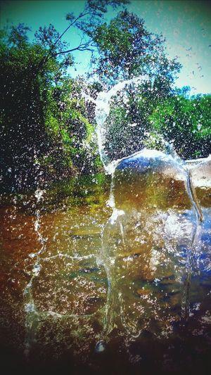 EyeEm Best Shots Water Reflections Taking Photos Nature