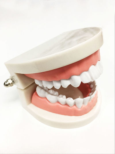 Close-up Dental Health Dentist Healthcare And Medicine Human Teeth Hygiene Indoors  Model - Object People Pill Prosthetic Equipment Studio Shot White Background