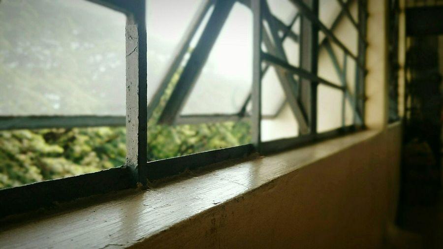 Just a window... Backgrounddefocus Ordinary Extraordinary PhonePhotography