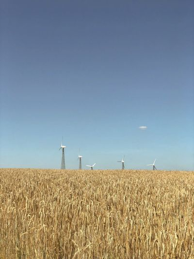 Wind turbines on field against clear sky