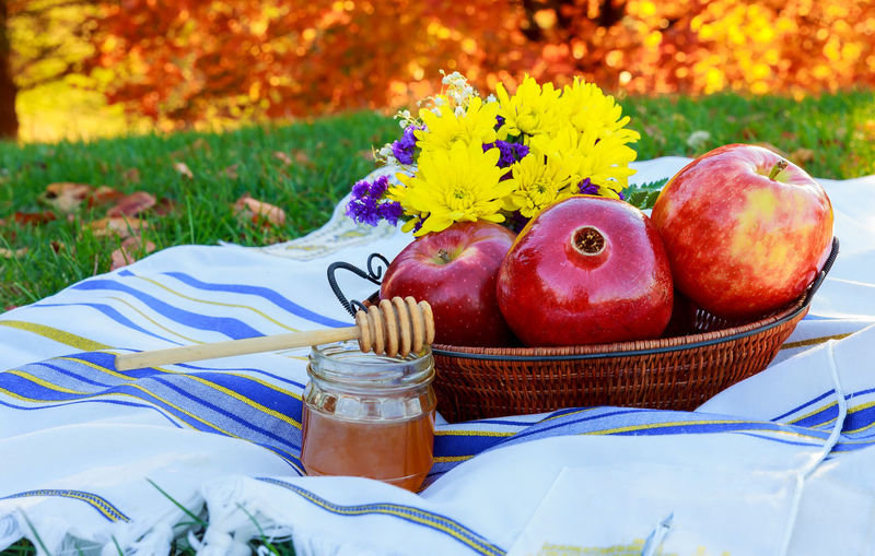 Apples by honey in basket on picnic blanket