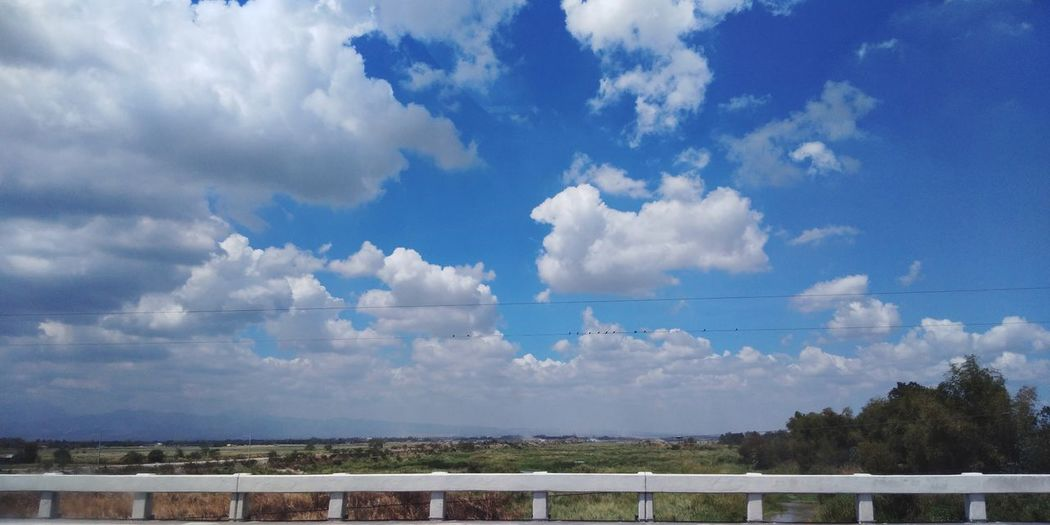 a fine day it is.. 😊🌞 EyeEmNewHere Mobile Photography Vivo Blue Sky And Clouds Blue Sky Birds Cloud - Sky Sky Outdoors Landscape Tranquility Day Tree Blue Beauty In Nature
