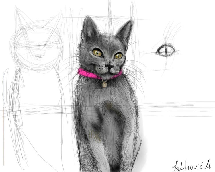 Art Baby Cat Details Digital Art Domestic Animals Eyes Gray Cat Intous5 Russian Blue Cat