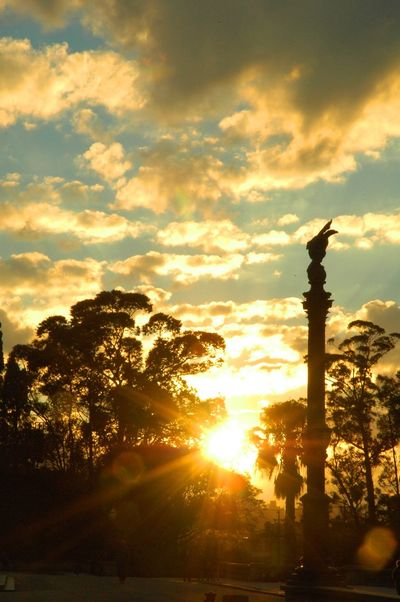 Historical City Sunset Silhouettes Trees Sunset Tranquility