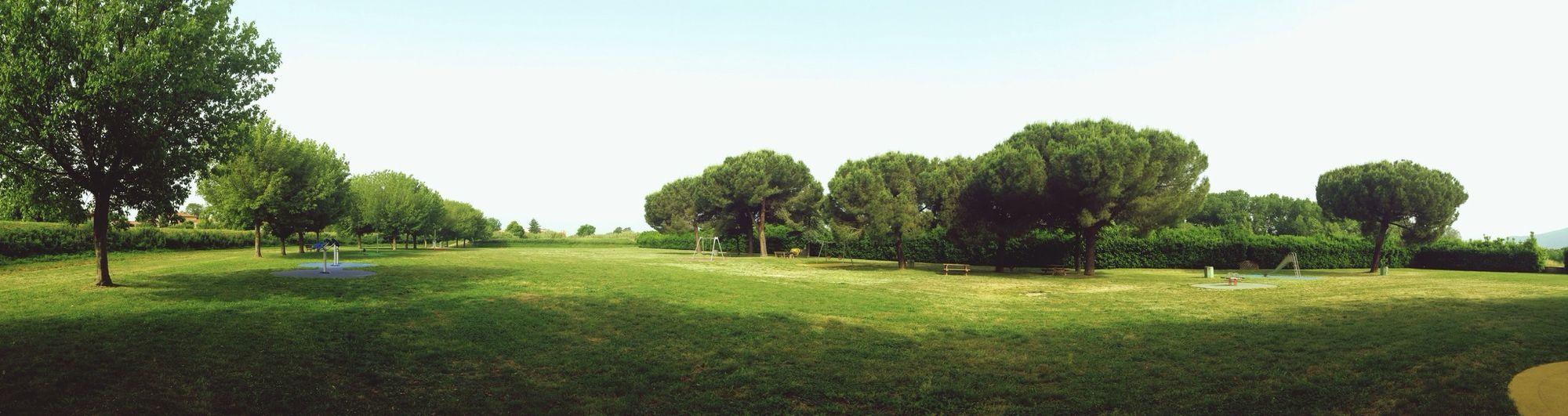 Nature Pisa Mattina Run