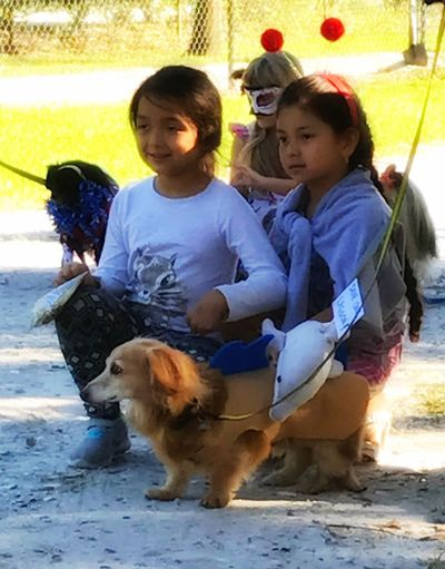Jack and two of his newest Admirers At The Pawrade Young Kids Love Jack Posing For The Camera Dog Love Halloween Dog Costume Kathy Made It