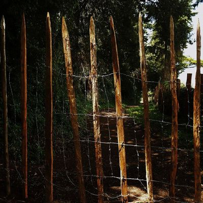 Private Property, Tresspass _____________________________________________ TembeaKenya Haiafrika Explorekenya Vscokenya Wanderlust Passionpassport Visualsgang Lifeofadventure IGNairobi Nikonai PotDKenya Agameoftones __________________________________________