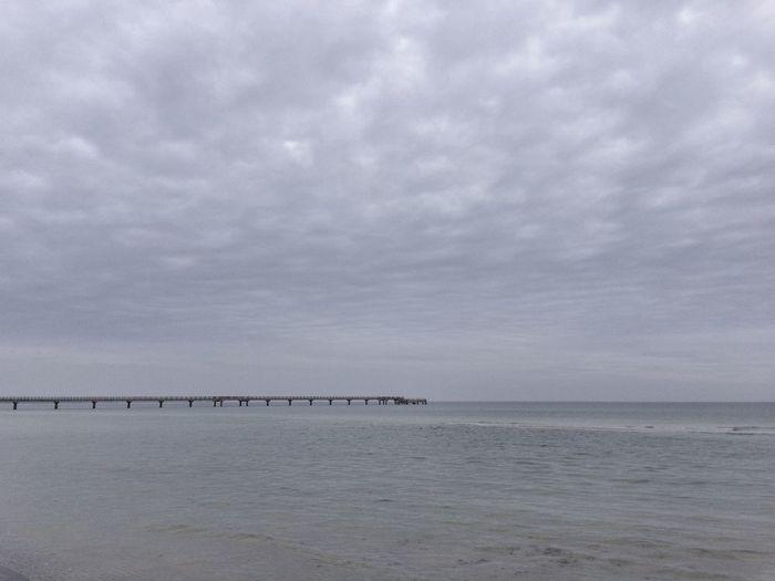 Gray Morning