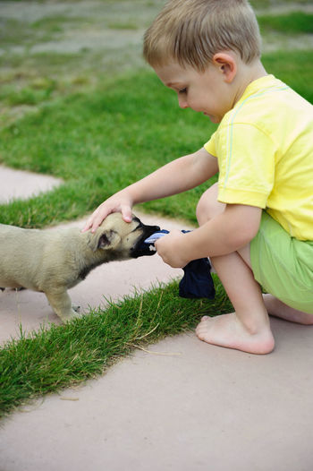 Cute boy playing with puppy while crouching at lawn