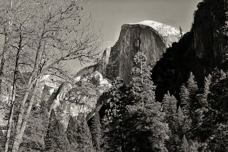 Half Dome. My USA Journey Half Dome Blackandwhite Black And White Black & White Landscape Sky Sky And Clouds Mountain Mountain Range Tree Peak USA Nature Scenics Scenics - Nature Nature_collection Nature Photography Landscape_Collection Travel Traveling Travel Photography EyeEm Best Shots EyeEm Selects EyeEm Nature Lover California EyeEmBestPics Sony Travel Destinations Eyeemphotography EyeEm Gallery EyeEm Best Shots - Nature USAtrip Sky Rock Formation Rocky Mountains Natural Arch Rock - Object Rock Canyon Arid Climate Geology Rugged Arid Landscape Physical Geography Tranquil Scene Eroded Cliff Stay Out