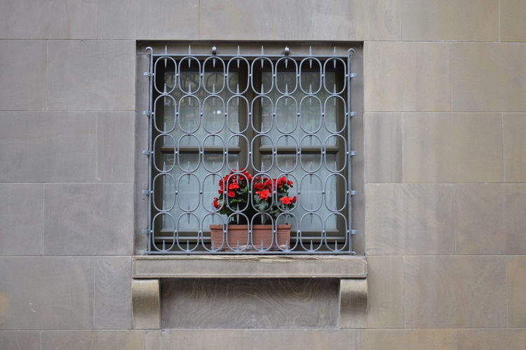 Flowers in prison Building Exterior Facade Detail Flowers Flowers At The Window Minimalist No People Red Red Flowers Window