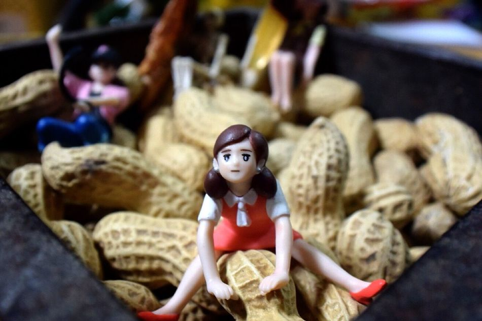 落花生なんだよ( ̄∇ ̄) Japanese Culture ふちこ 節分 Figure Toys