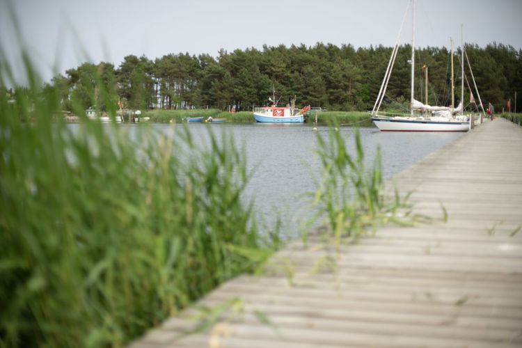 Auszeit an der Ostsee 2018 Nature Naturschutzgebiet Ostsee Ostseeküste Scenic Urlaub Day Grass Green Color Group Of People Growth Incidental People Mode Of Transportation Nature Nautical Vessel Outdoors Plant Reisen Sailboat Scenics - Nature Selective Focus Tranquility Transportation Travel Tree Water