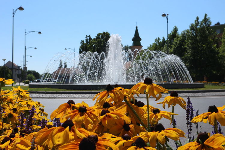 Fountain Canon M10 Gyula The Week On Eyem Hidden Gem Showcase July Hungary