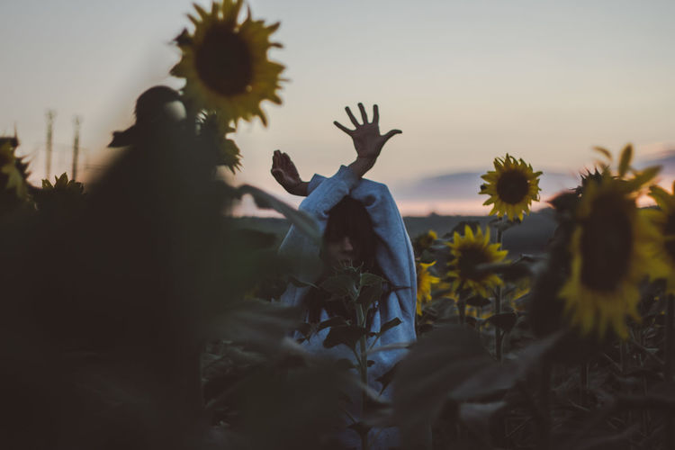 Woman Body Part Human Body Part Hand Hands Field Sunflower Sunflower Field Sky Plant Group Of People Men Sunset Nature Real People Leisure Activity Lifestyles Flowering Plant Flower Selective Focus People Women Adult Growth Togetherness Outdoors Three Quarter Length Human Arm Arms Raised